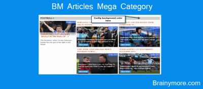 BM Articles Mega Category