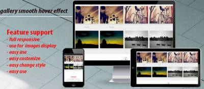portfolio gallery smooth hover effect