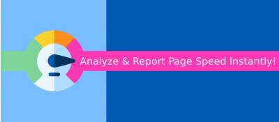 Page Speed Analyze